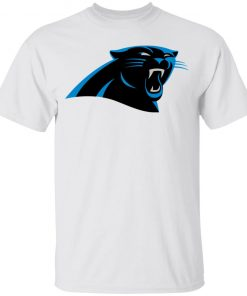 Panthers NFL Pro Line by Fanatics Branded Gray Victory Youth T-Shirt